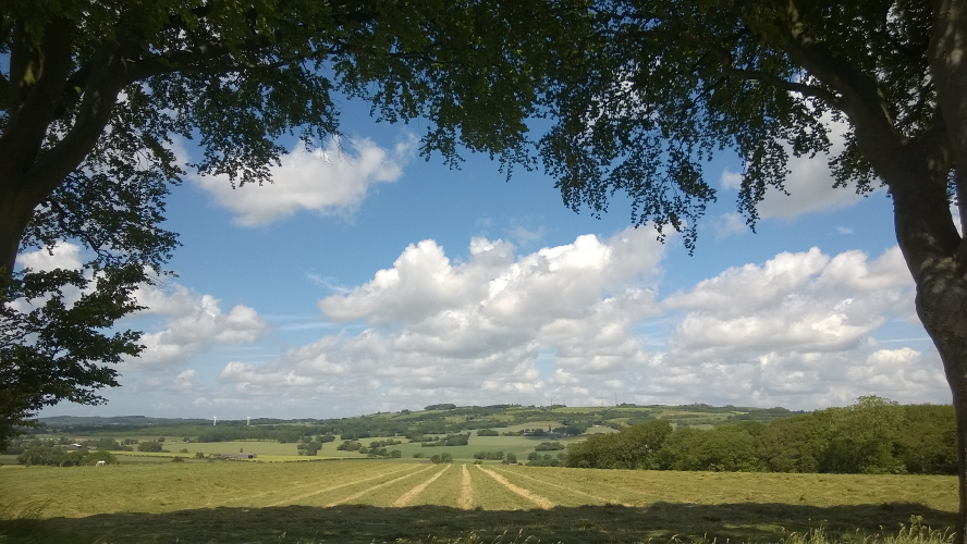 View from Crank Path Toward Billinge Hill